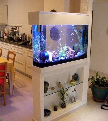Mempercantik Ruang Interior Dengan Akuarium