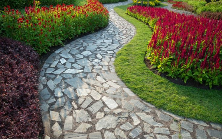 TIPS Mudah Menanam Rumput Untuk Membuat Taman Lebih Hijau