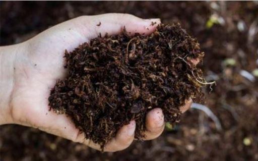 TIPS Mudah Membuat Pupuk Kompos Di Rumah Sendiri