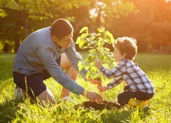Pentingnya Tinggal Di Lingkungan Hijau Untuk Kesehatan