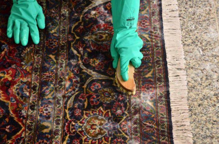 Tak Perlu Ke Laundry Tips Mudah Mencuci Karpet Sendiri